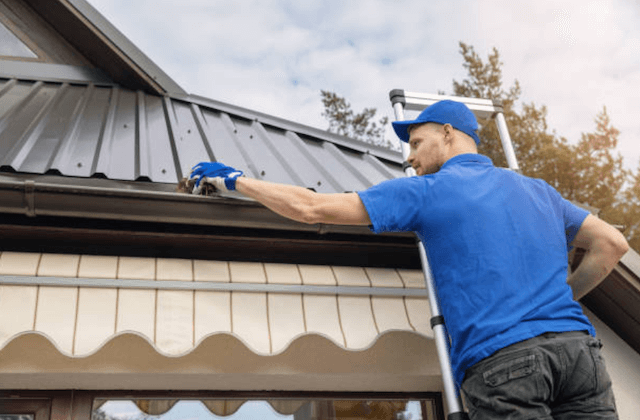 gutter cleaning in palatine