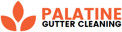 Palatine Gutter Cleaning